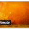 WordPress › Shortcodes Ultimate « WordPress Plugins