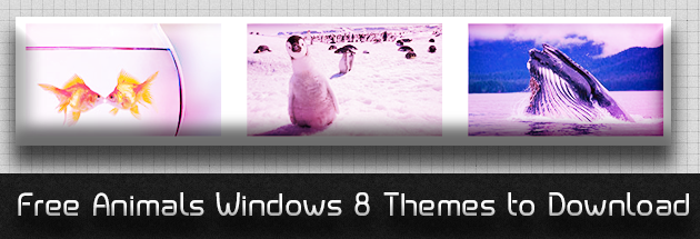 Don't miss :  Free Animals Windows 8 Themes to Download
