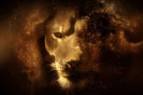 Mac OS X Lion Wallpapers HD Freakify 2013 (11)