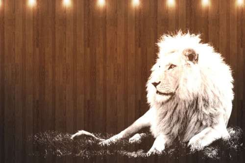 Mac OS X Lion Wallpapers HD Freakify 2013 (4)