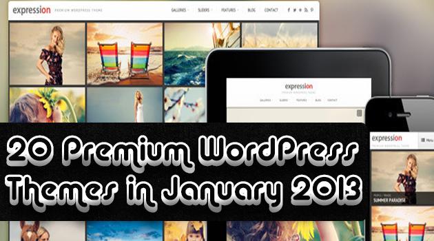 20-Premium-WordPress-Themes-in-January-2013