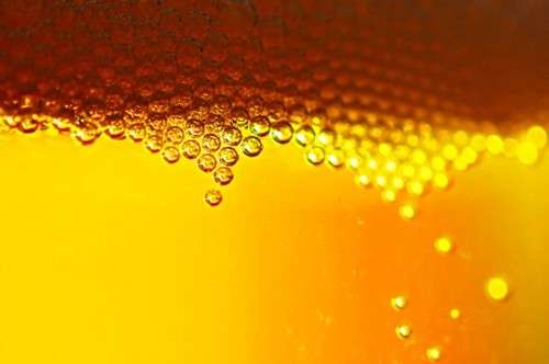 Beer Bubbles 500x332 image