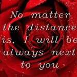 2013 Valentine Day Wallpapers HD quotes (107)