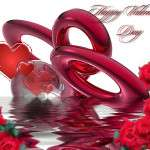 2013 Valentine Day Wallpapers HD quotes (5)