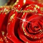 2013 Valentine Day Wallpapers HD quotes (105)