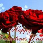 2013 Valentine Day Wallpapers HD quotes (97)