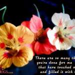2013 Valentine Day Wallpapers HD quotes (76)
