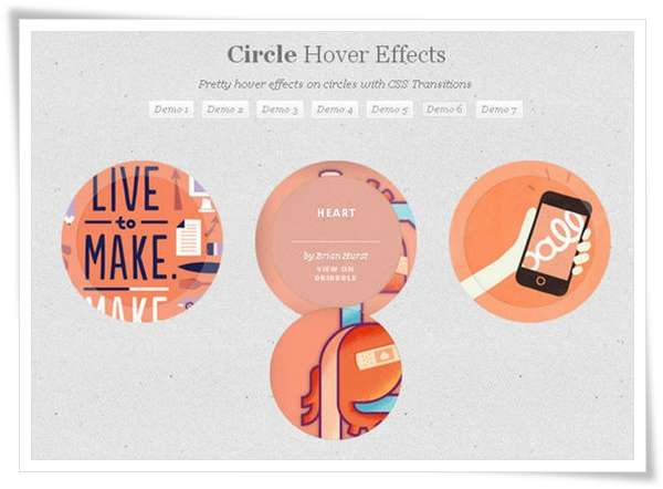 Circle Hover Effects with CSS Transitions1 image