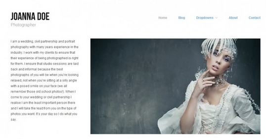 high quality minimal wordpress themes