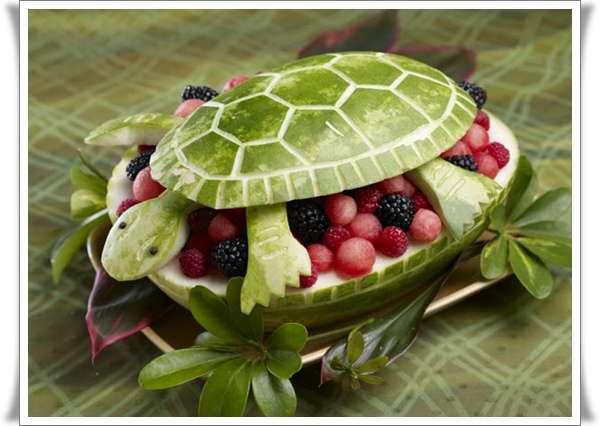 watermelon-turtle
