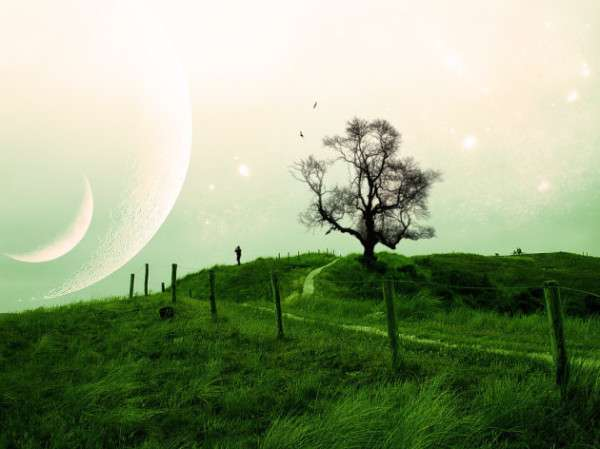Landscape wallpaper 22