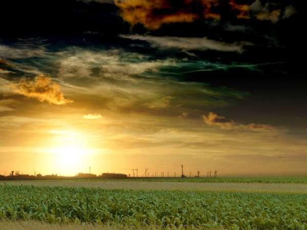 Sunrise Photography (24)