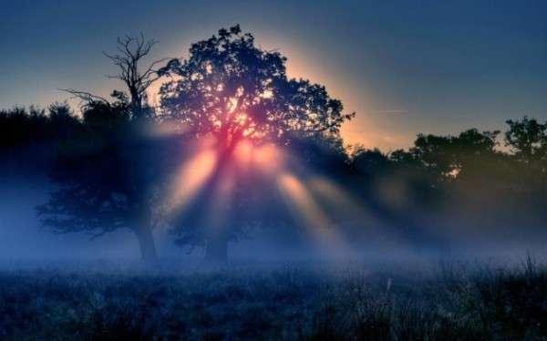 Sunrise Photography (3)