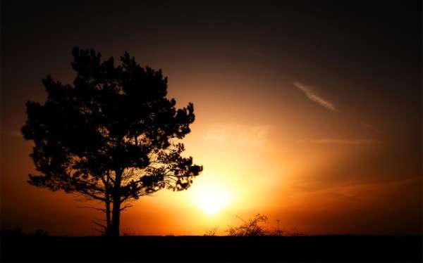 Sunrise Photography (6)