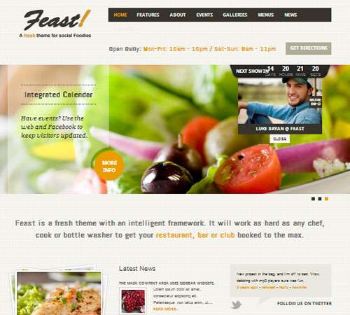 Feast - Facebook Fanpage & WordPress theme
