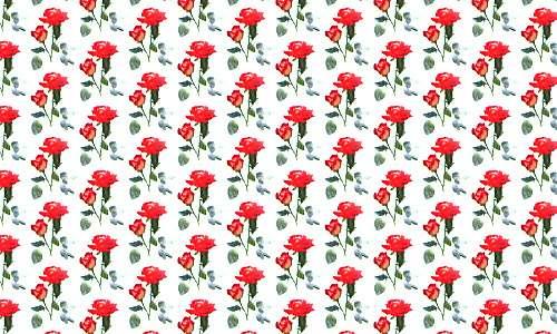Floral 142