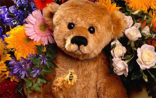 teddy with flowers wallpaper