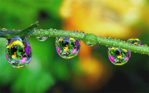 Colorful Waterdrops wallpaper
