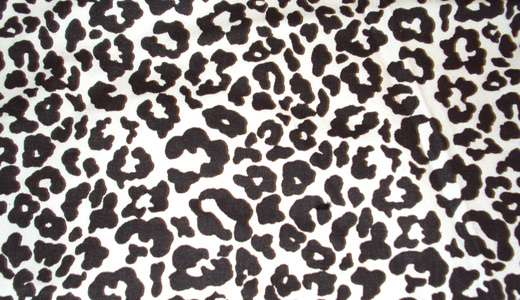 White leopard skin texture free download hi res high resolution