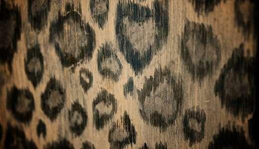 Big leopard skin texture free download hi res high resolution
