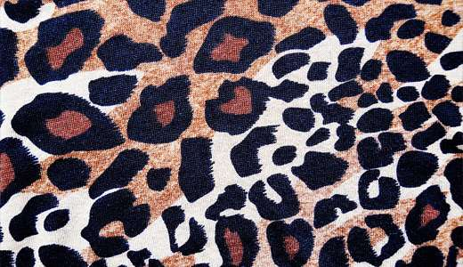 Fabric print leopard skin texture free download hi res high resolution