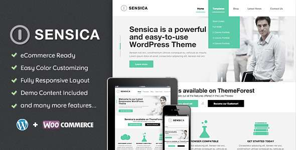 Sensica - Responsive WordPress Theme - Business Corporate