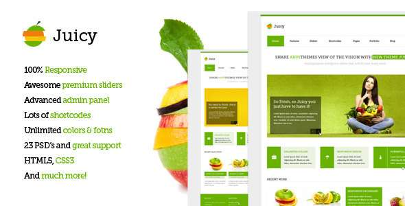 Juicy - Responsive Multi-Purpose WordPress Theme - Corporate WordPress