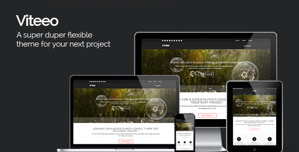 Viteeo - Responsive Business Theme - Business Corporate