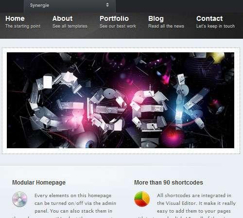 Synergie Premium WordPress Theme