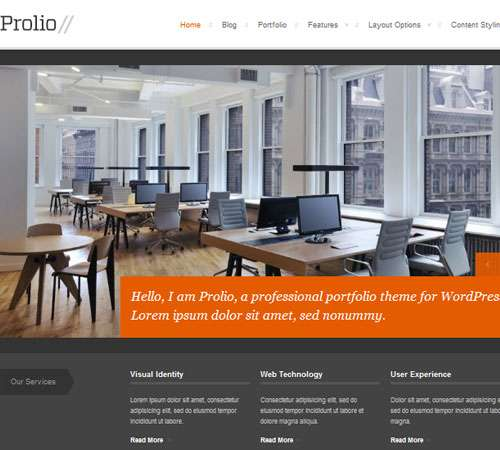 Prolio, a Powerful Portfolio WordPress Theme
