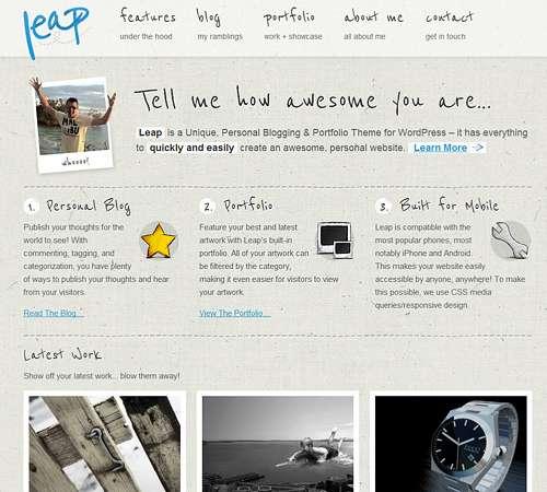 Leap Portfolio Theme