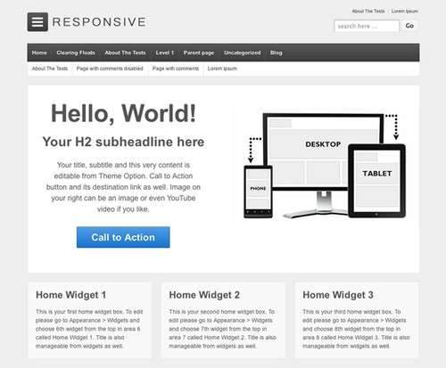Responsive WP Website Theme