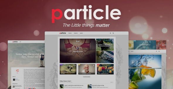 Particle - WP Magazine Theme - News / Editorial Blog / Magazine
