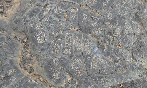 Lava Crack Texture 1
