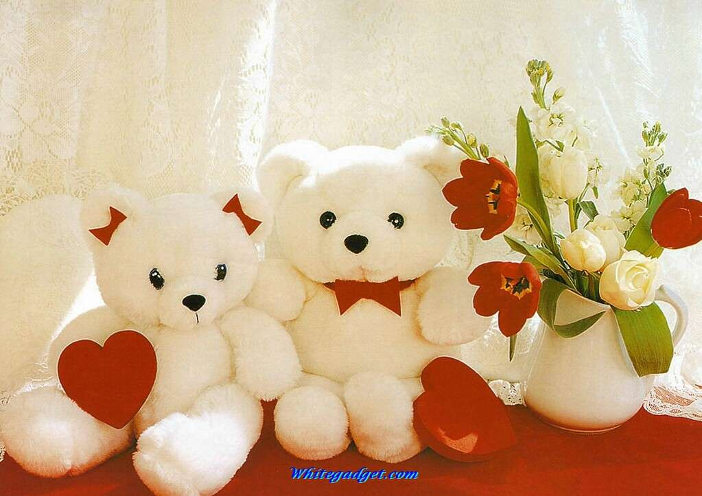 96409d1328859772-valentines-day-teddy-bears-valentines-day-teddy-bears-images.jpg (1023×723)