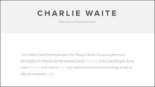 Charlie Waite Flat Web Design Example image