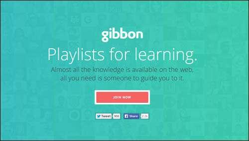 Gibbon Flat Web Design Example image