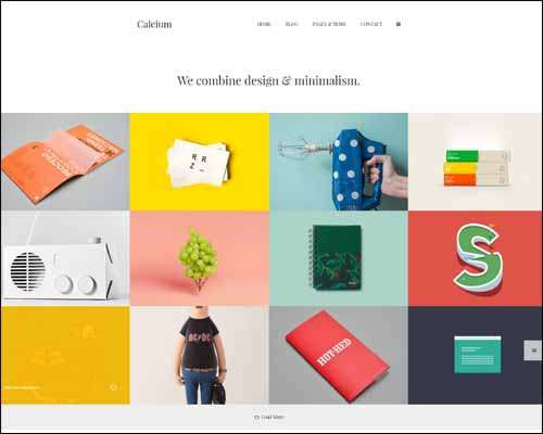 25 Best Responsive Flat WordPress Themes 2014 : Freakify.com
