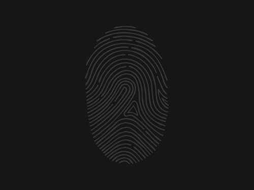 FingerPrint-Pixels