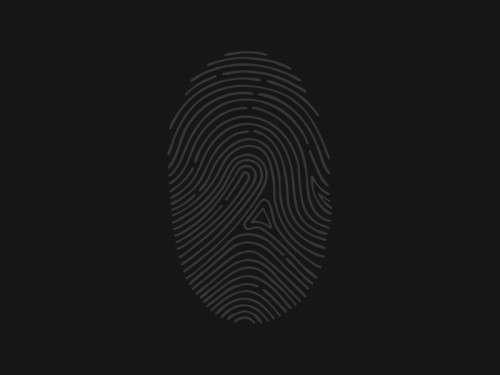 FingerPrint-Pixels