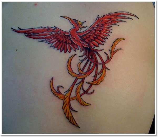 Phoenix Tattoos for Men12