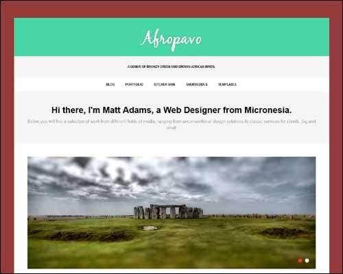 afropavo wordpress portfolio theme image