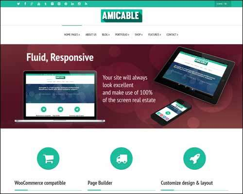 amicable responsive multi purpose wordpress theme image