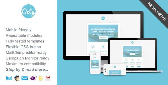 Octy, Minimalist Business Newsletter Template - Newsletters Email Templates