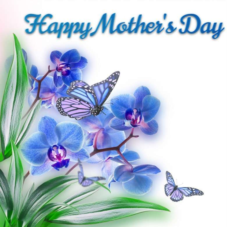 https://freakify.com/wp-content/uploads/2014/05/Happy-Mothers-Day-On-Spring-Flowers-Card-D-780x78011111111.jpg
