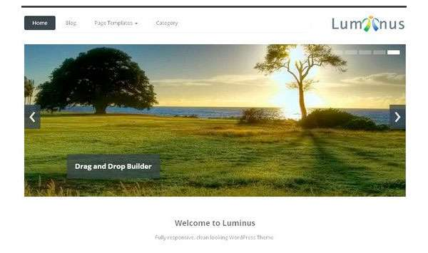 Luminus new free WordPress Themes 2014